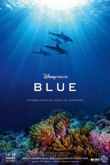 Blue (Dophins) FR